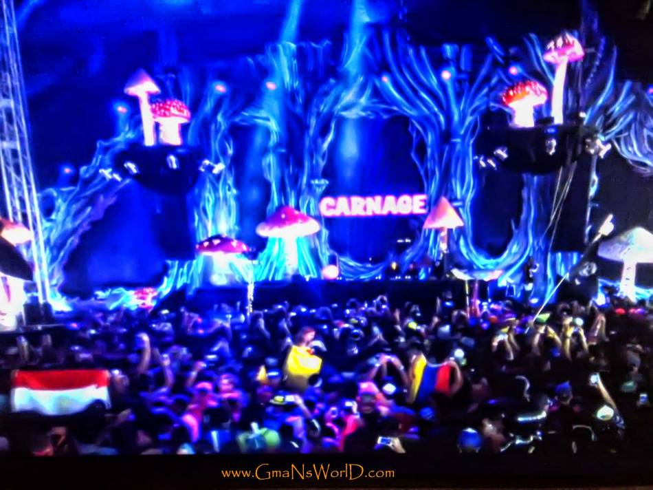 Live at TomorrowWorld 2013 - Carnage-TomorrowWorld @GmaNsWorld.com